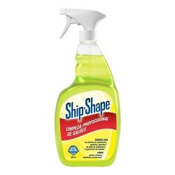 SHIP-SHAPE Limpeza Profissional do Salão