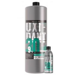 Oxidante Creme Blue 30V (9%) 1L - ABSOLUK
